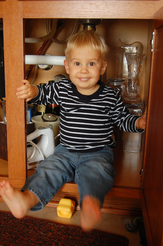 Cupboard-7